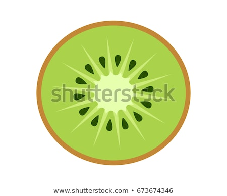 Vector Fruit of the Kiwi. stock photo © christina_yakovl