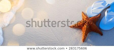 Papucs a homokon Stock fotó © Konstanttin