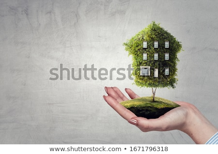 icon symbol of ecological house with green leaves Stock photo © LoopAll