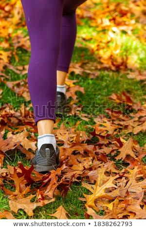 красивой · женщины · ног · цвета · коллаж - Сток-фото © pzaxe