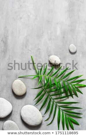 grey pebbles background Stock photo © prill