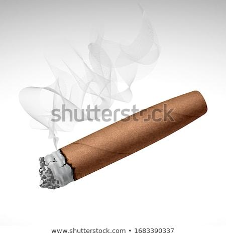 ハバナ ブラウン シガー 白 スペース 高級 ストックフォト © haraldmuc