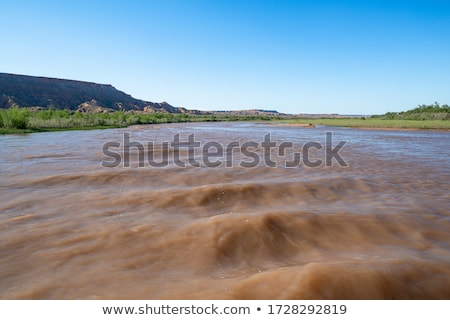 rapids of the Virgin River Stock photo © vwalakte
