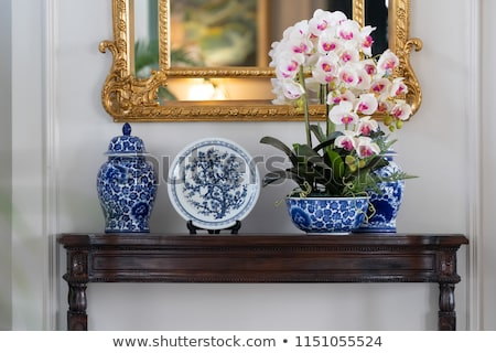 Orchid with mirroring Stock photo © photochecker
