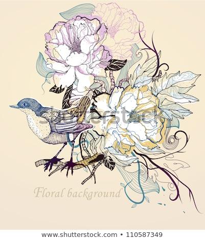 pillangók · fehér · tavasz · természet · terv · levél - stock fotó © elmiko