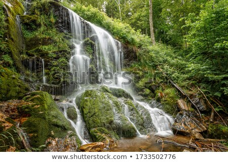 Stock photo: Waterfall and vegetables