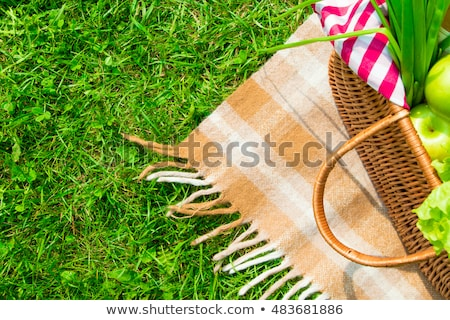 Springtop bottle and picnic basket stock photo © TheFull360