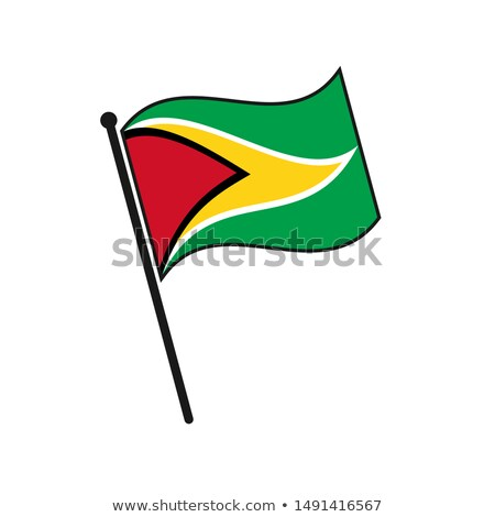 Guyana kicsi zászló térkép köztársaság szelektív fókusz Stock fotó © tashatuvango