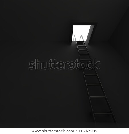 Square manhole with an aluminum ladder in darkness Stock photo © Serp