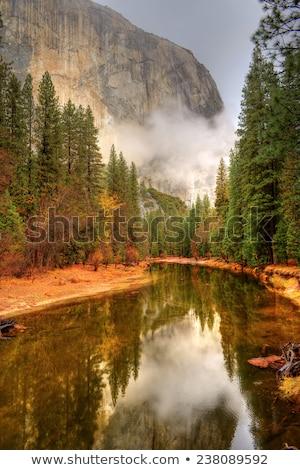 Río parque nacional de yosemite escena parque no Foto stock © cboswell
