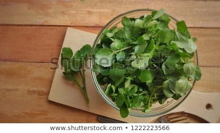 Watercress (Nasturtium officinale) Stock photo © rbiedermann