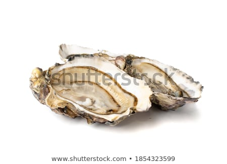 Gourmet fresh french oysters Stock photo © Klinker