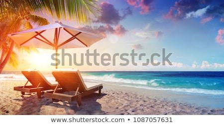 Kettő fedélzet székek esernyő trópusi tengerpart fából készült Stock fotó © kasto