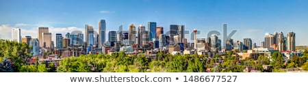 panorama of calgary stock photo © benkrut