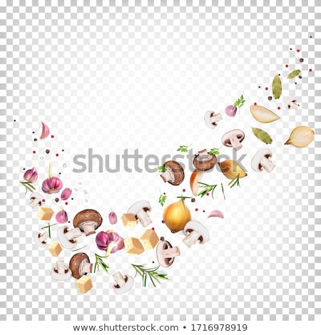 Ingredients of Mushroom Julienne Stock photo © zhekos