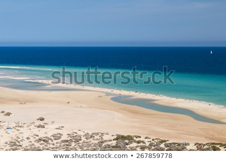 Sotavento Beach in Fuerteventura, Canary Islands, Spain Stock photo © nito