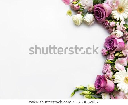 Virág keret Stock fotó © almaje