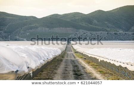 Intensywny wysoki Hiszpania widoku krajobraz Zdjęcia stock © nito