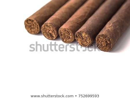 Szivar fehér levél füst cigaretta életstílus Stock fotó © ozaiachin