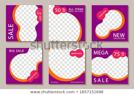 Limited Collection Purple Vector Icon Button Stock photo © rizwanali3d
