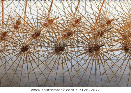 fabric umbrella made from bamboo structure stock photo © punsayaporn