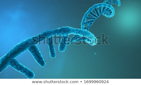 DNA and RNA molecules Stock photo © idesign