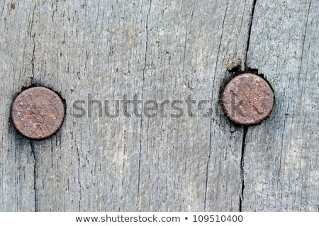 rustic wooden surface with rusty nails stock photo © stevanovicigor