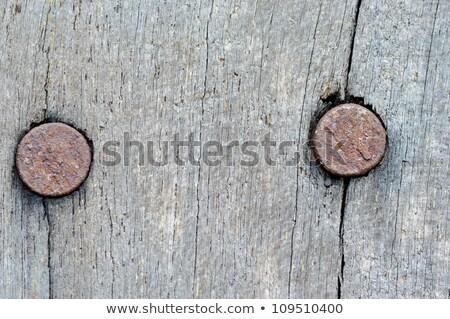 Rustiek houten oppervlak roestige nagels top Stockfoto © stevanovicigor