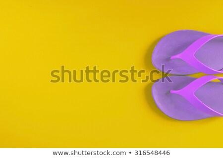пару Purple сандалии иллюстрация белый фон Сток-фото © bluering