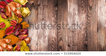 Autumn Leaves over a Natural Dark Wooden background. Old dirty wood tables or parquet with knots and Stock photo © DavidArts