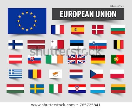 euro · simge · Belçika · bayrak · vektör · para - stok fotoğraf © tkacchuk