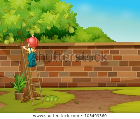 Boy climbing on green wall Stock photo © wavebreak_media