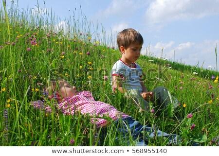 Kettő lányok domboldal fű természet gyermek Stock fotó © IS2