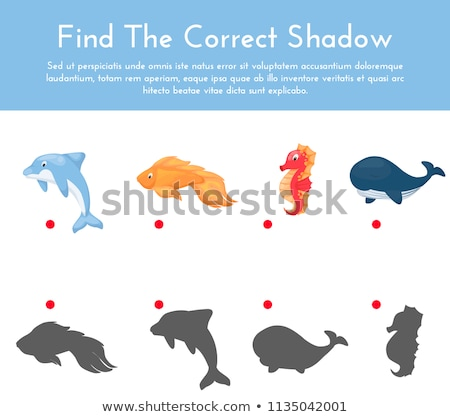 Kids educational Match The Shadow puzzle Stock photo © adrian_n