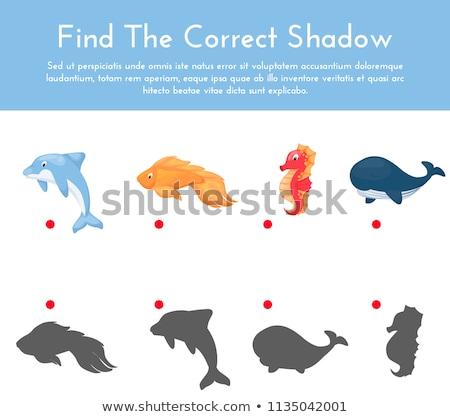 Vorschule · Schatten · Aktivität · Kinder · Karikatur · Illustration - stock foto © adrian_n
