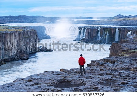 Tourist in a red jacket looks at the Selfoss waterfall Stock photo © Kotenko