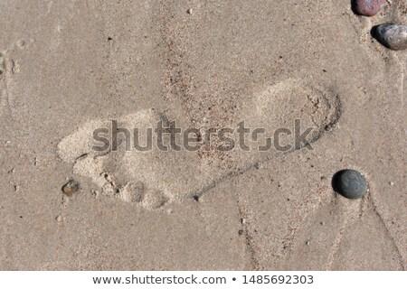 Lábnyomok nedves tengerparti homok csökkenő nézőpont textúra Stock fotó © stevanovicigor
