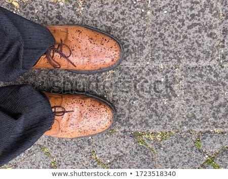 Man Show Dress Shoes Stock photo © lenm