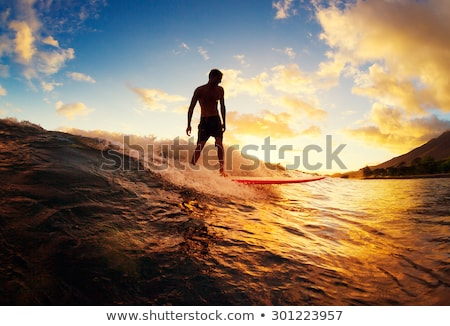 Boy surf beach silhouette Stock photo © joyr