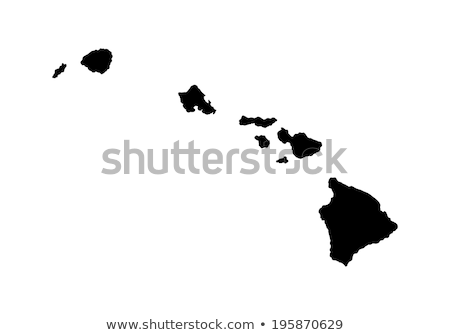 Hawaii vector map high detailed silhouette illustration isolated on white background. stock photo © kyryloff