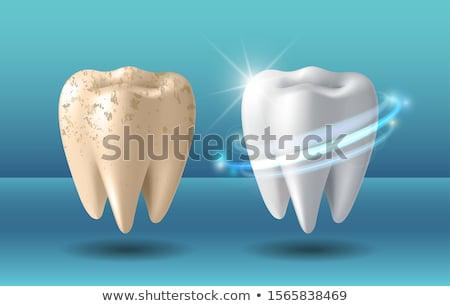 diente · cepillo · cara · feliz · médicos · dentista - foto stock © jossdiim