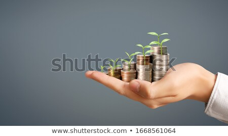 Golden Dollar Coin For Business And Finance Concepts Stock photo © hittoon