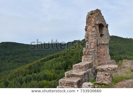 the castle ruin fleckenstein in alsace stock photo © lianem