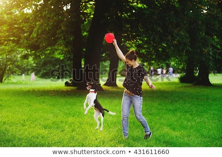 Young woman with her black dog  outdoor, in a park playing frisbee Stock photo © lightpoet