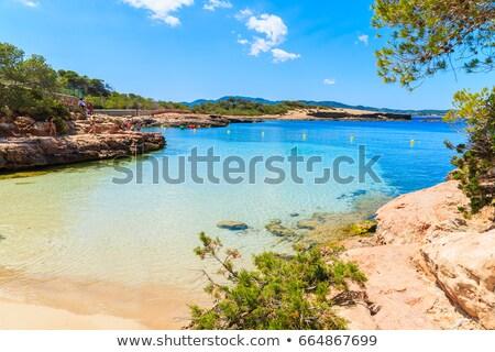 Ibiza Cala Gracio Gracioneta beach  Stock photo © lunamarina