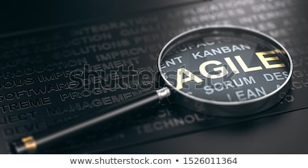 Focus on project management methodology. Agile software developm Stock photo © olivier_le_moal