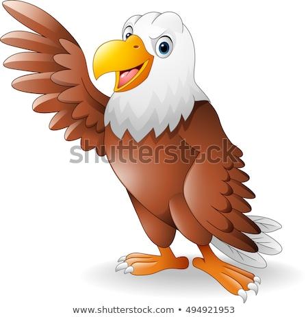 Cartoon bald eagle Stock photo © tigatelu
