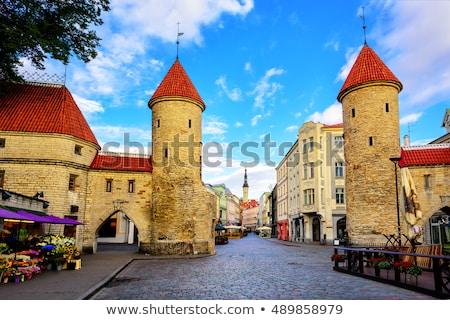 Portão Tallinn Estônia cidade parede Foto stock © borisb17