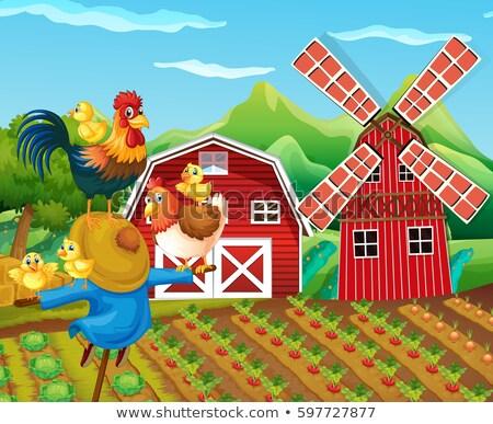 シーン かかし 野菜 庭園 実例 鶏 ストックフォト © bluering