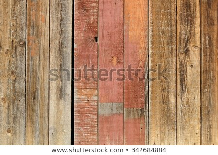 Green woodgrain Stock photo © stoonn